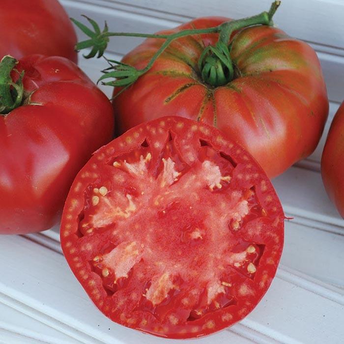 Prudens Purple Tomato