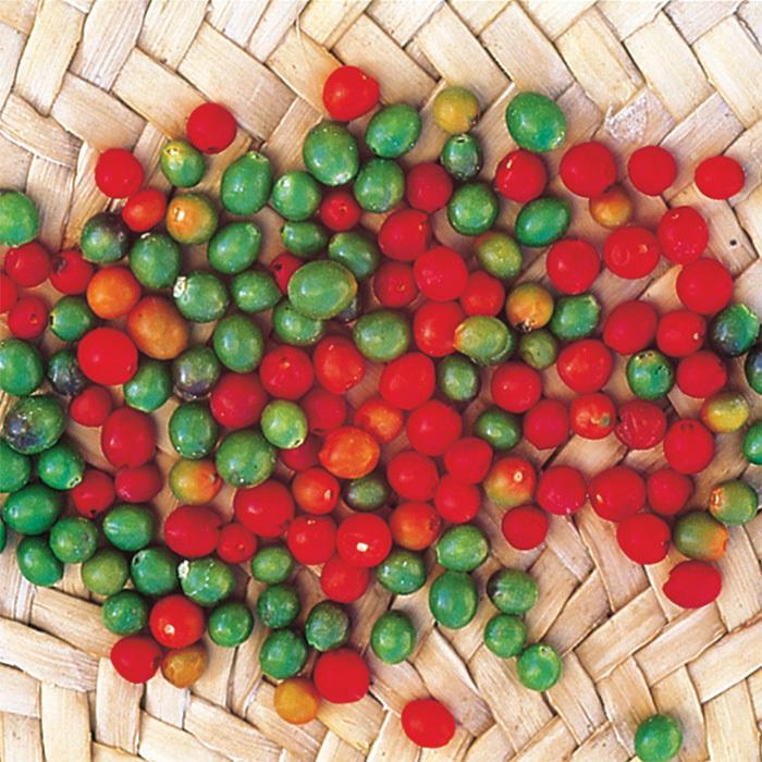 Chiltepin Pepper