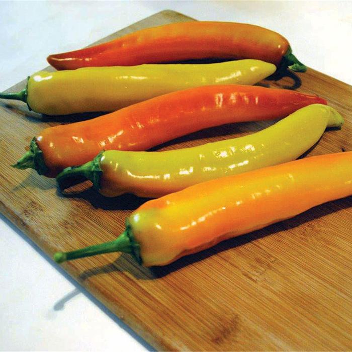 Hot Sunset Hybrid Pepper