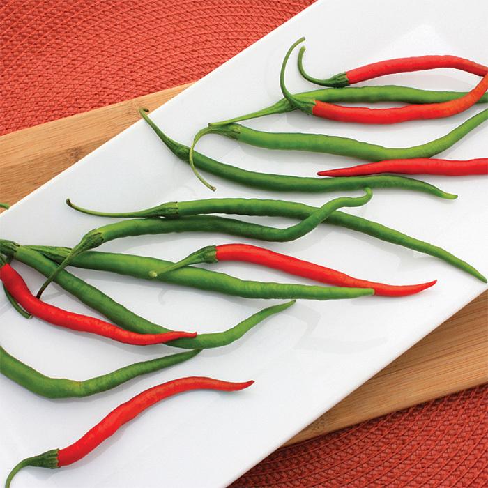 Gong Bao Hybrid Pepper