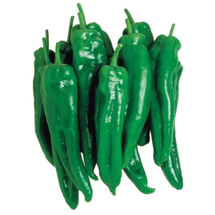 Italico Hybrid Pepper