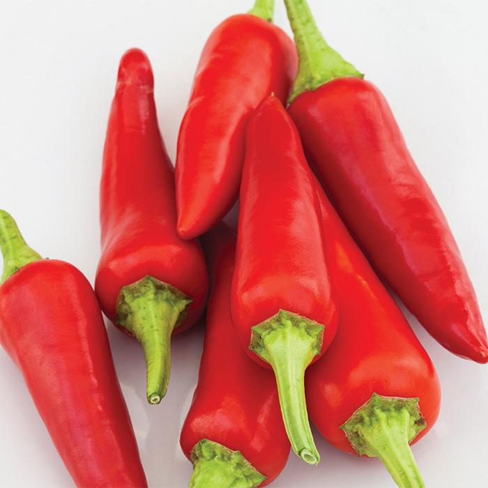 Alter Ego Hybrid Pepper
