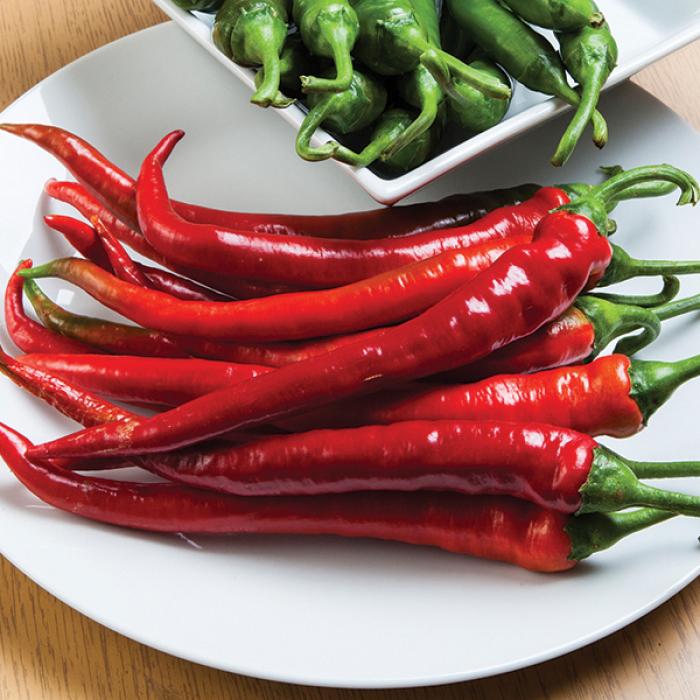 Longhorn Hybrid Cayenne Pepper