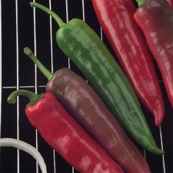 Goliath Griller Hybrid Pepper