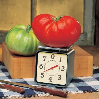 Big Zac Hybrid Tomato