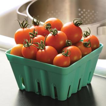 Orange Zinger Hybrid Tomato