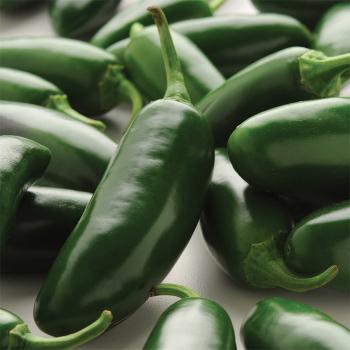 La Bomba Hybrid Jalapeno Pepper
