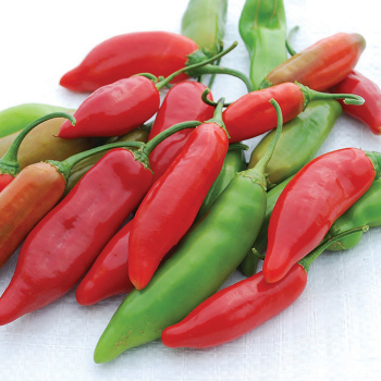 Aji Delight Pepper