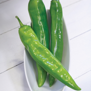 Desperado Hybrid Anaheim Pepper