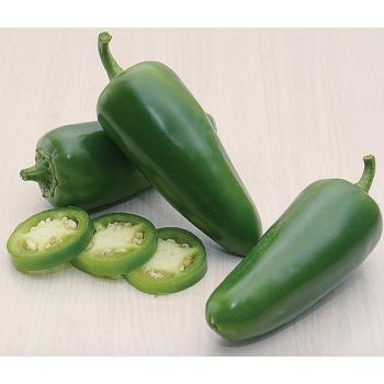 Paquime Hybrid Jalapeno Pepper