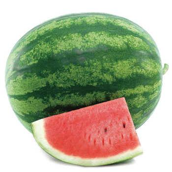 Solitaire Hybrid Watermelon