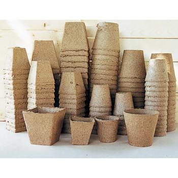 Jiffy 3 Inch Square Peat Pots