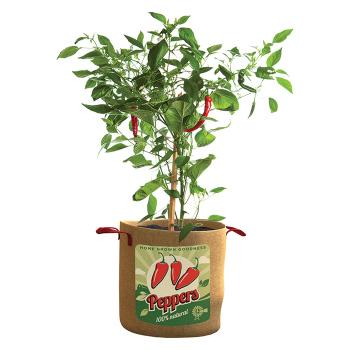 Vintage Grow Bags - Pepper