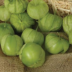 Tomatillo Seeds