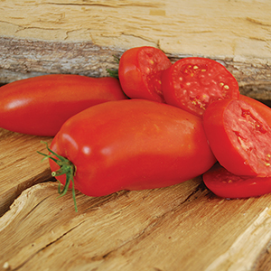 Open Pollinated Tomato Seeds